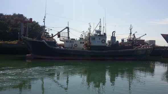 어획물운반선